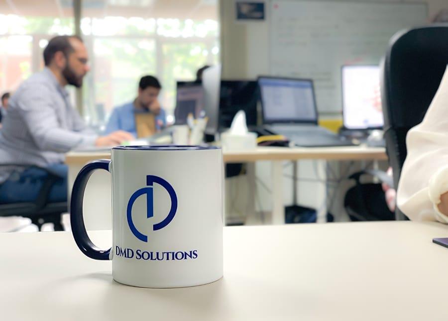 DMD Solutions team photo
