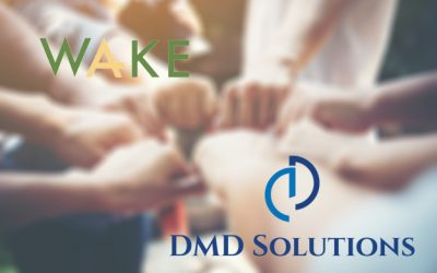 DMD Solution's collaboration with Wake Engineering